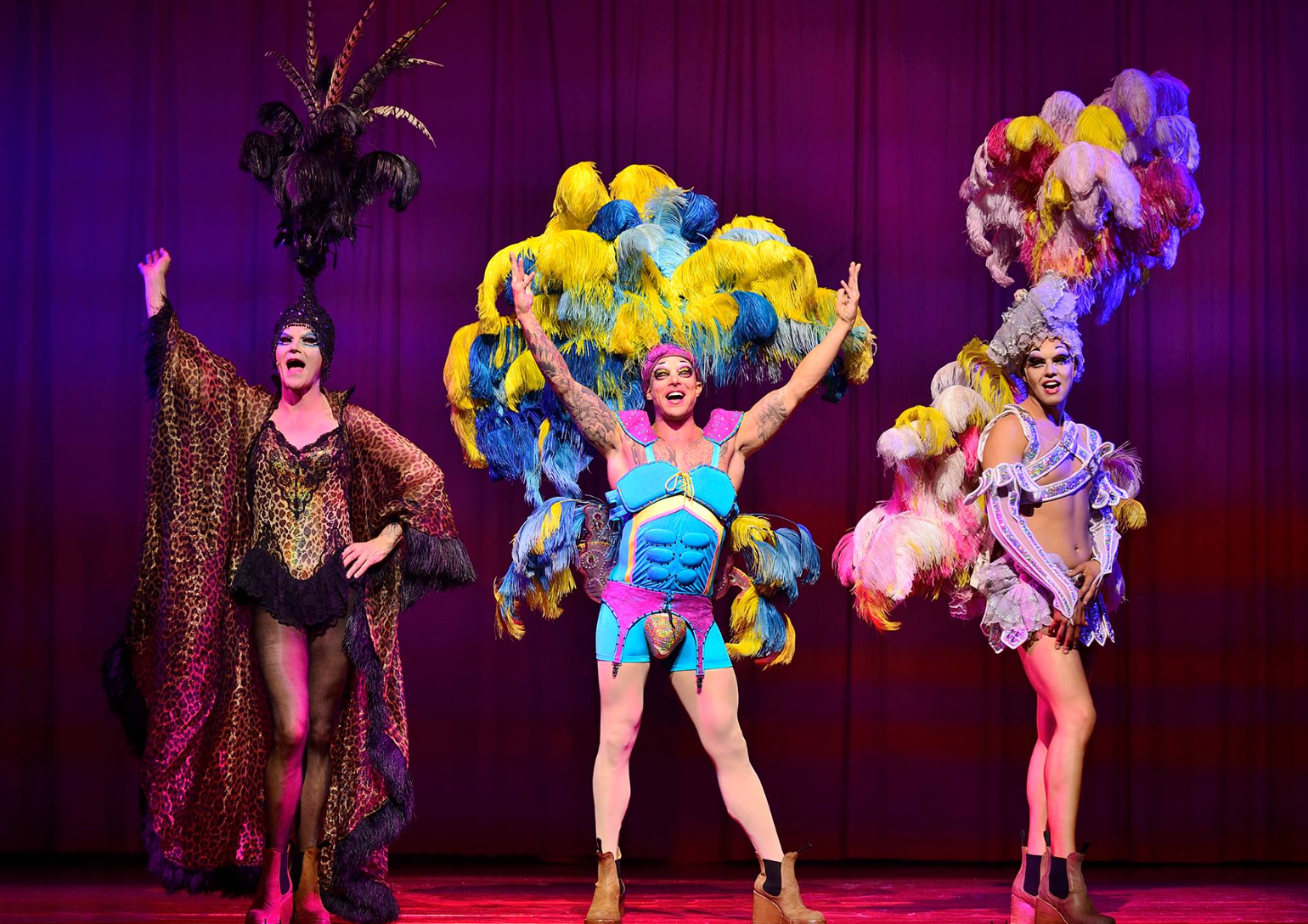 Priscilla Queen of the Desert UK Tour starring Duncan James