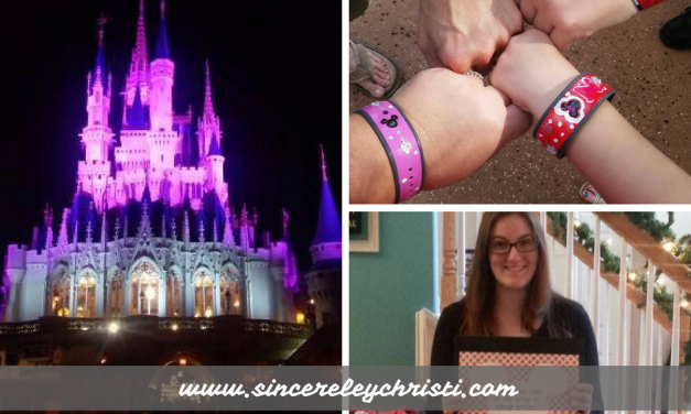 Our Disney World Vacation Experience 2016
