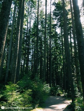 Spring 2015: Visited Twin falls, suspension bridge, and the 300 hole