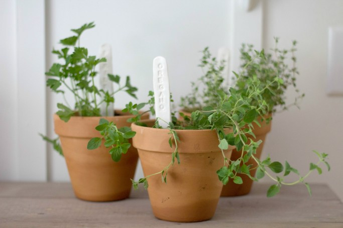 Make Your Own Herb Markers How-To