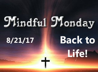 Mindful Monday Devotional – Back to Life!