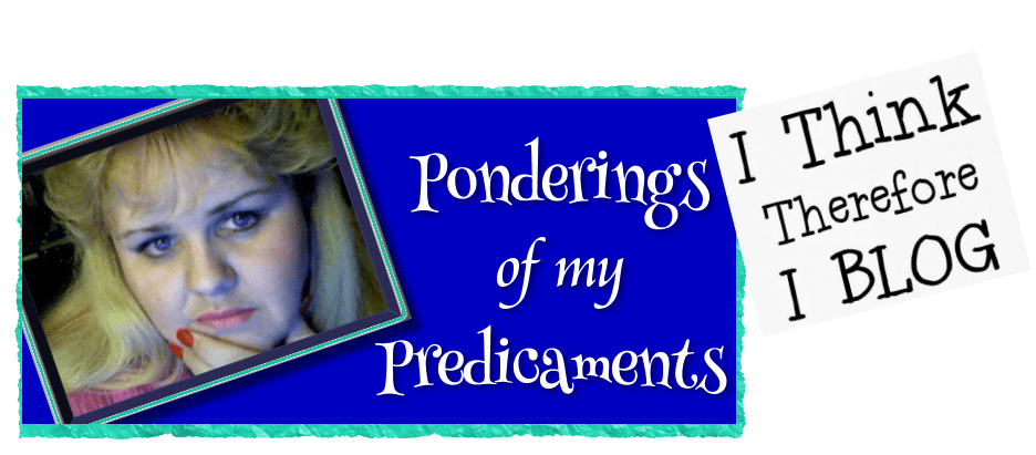Ponderings of My Predicaments:  My Husband's Crisis
