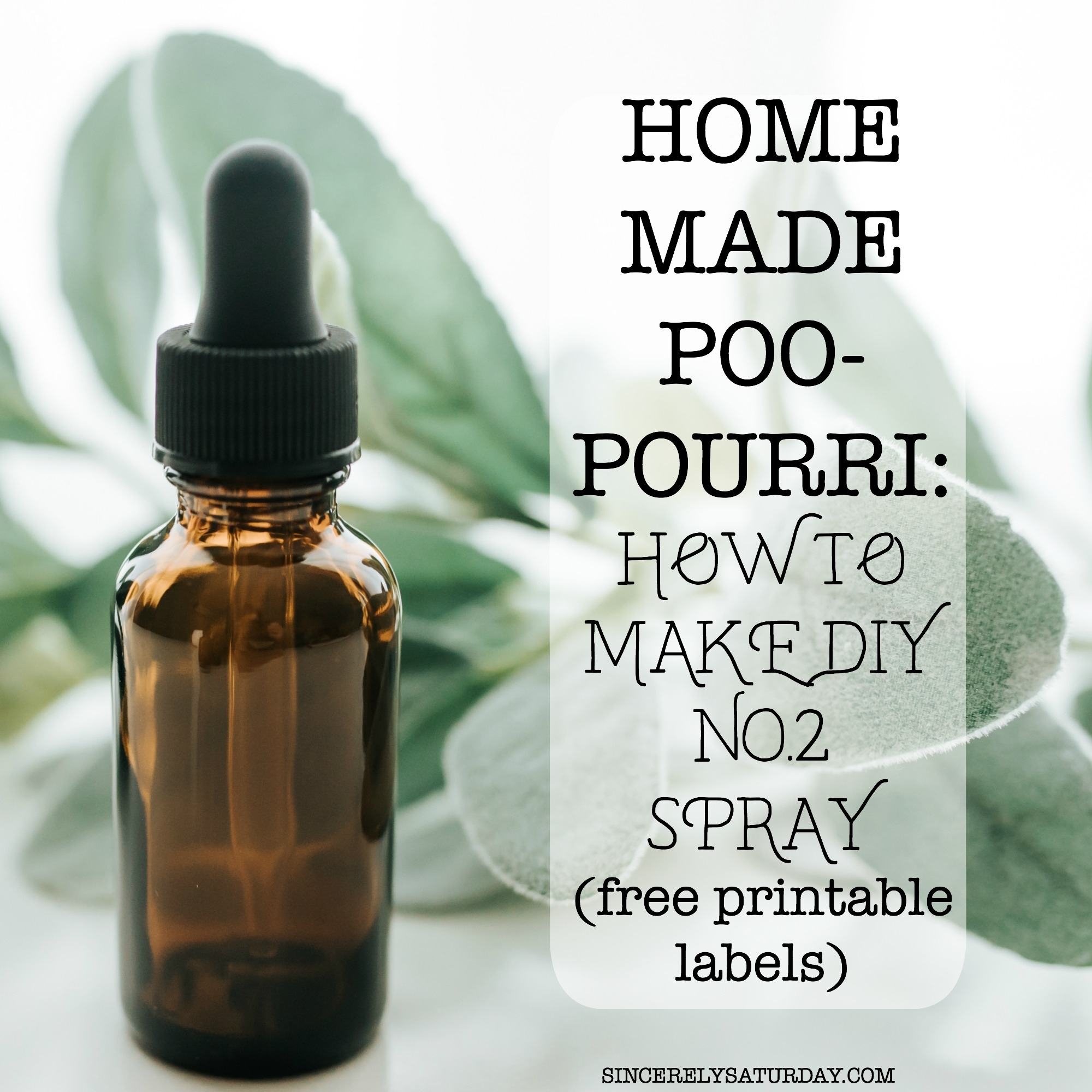 Homemade Poo-Pourri: How to make DIY No.2 spray (Printable labels included)