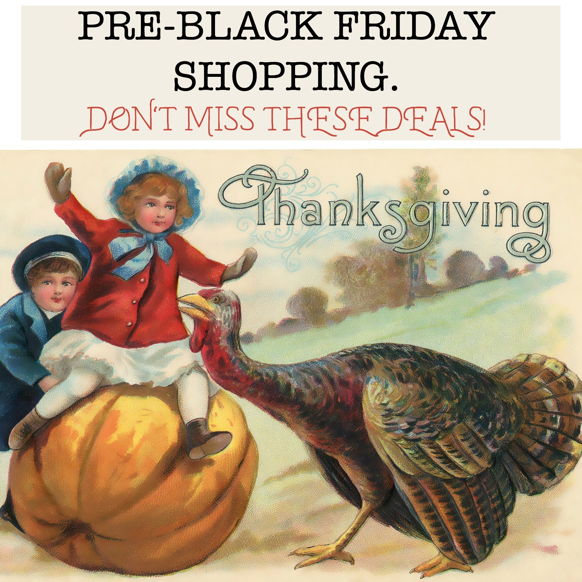 Pre-Black Friday shopping. Don't miss these deals!