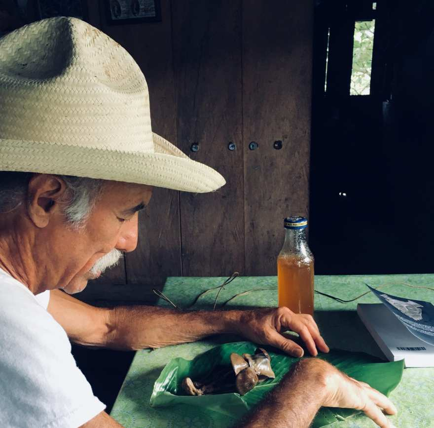 Michael Stuart Ani and his mushrooms
