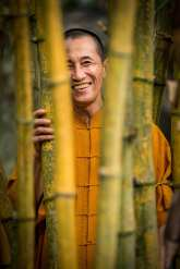 """Bamboo runs deep in Vietnamese tradition"" Thich The Tuong tells me outside his modest home amongst a forrest of bamboo. He is a Buddhist Monk with a love for growing things. Travelling across Vietnam Tuong has collected over 100 species of bamboo which he cultivates in the bamboo gardens that surround us. He has a peaceful, friendly air about him and when I ask him about his daily life he replies with a Zen Buddhist poem, simple yet somehow profound. Tuong has a dream to one day create a bamboo conservation park where he can preserve all the species of bamboo in Vietnam."