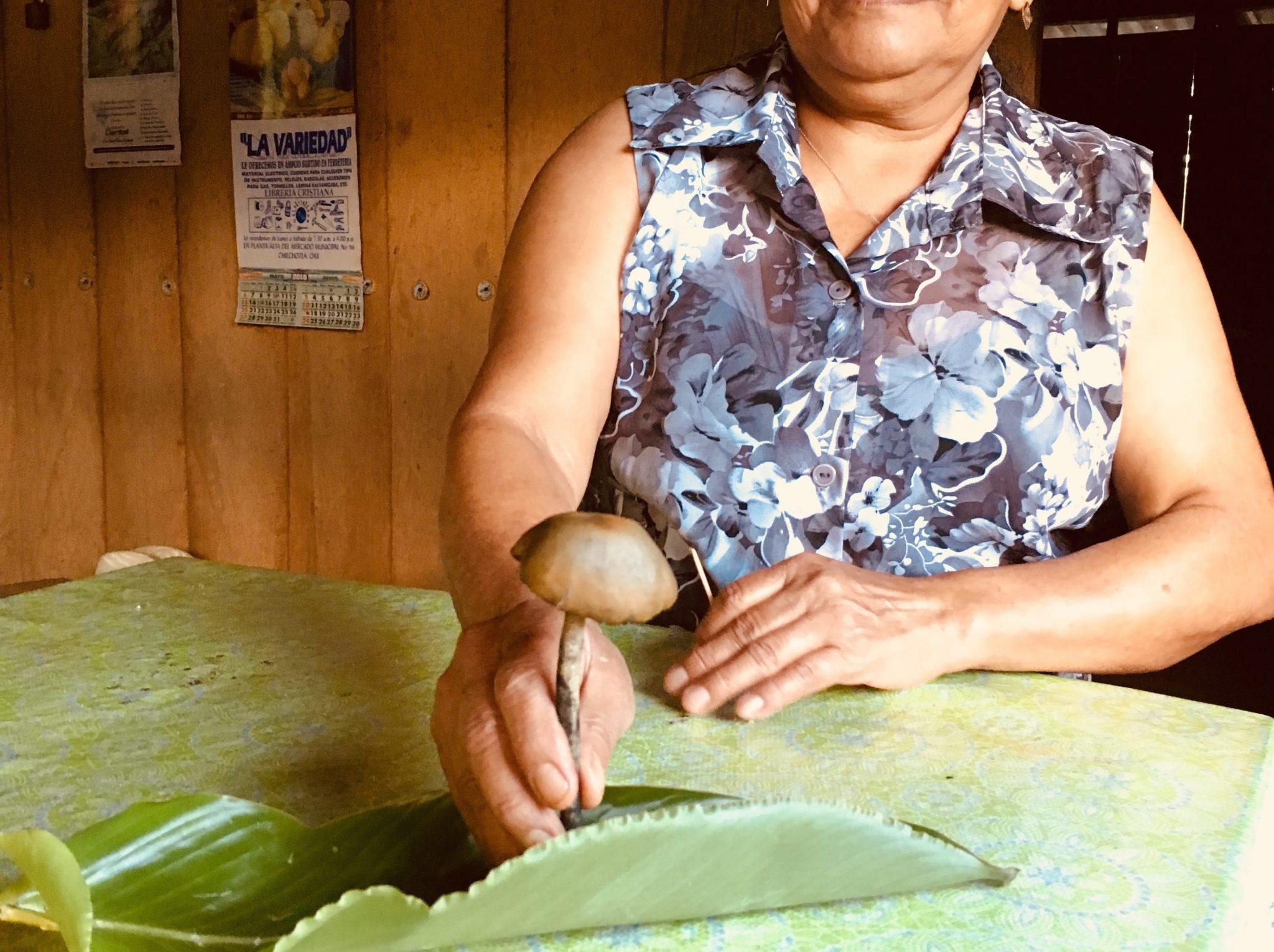 The Inside Story behind the Mazateca Project II | Sinchi
