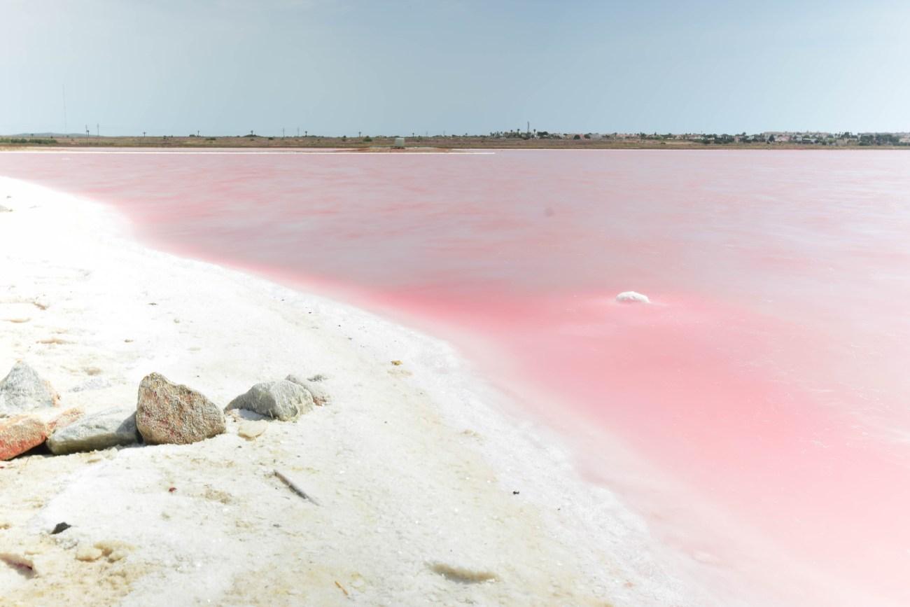 puentes colgantes y la laguna rosa