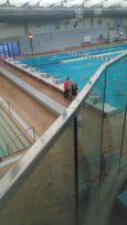 Calgary Aquabelles (5)