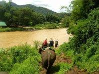 Consejos sobre Tailandia - Ruta en elefante por Chiangmai