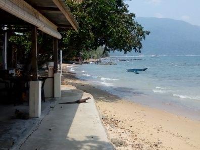 IMG 20140728 130258 - Kuala Lumpur y la Isla Tioman: 7 días en Malasia