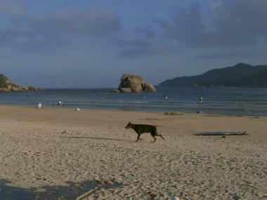 P2010185 - Beaches of Hainan: Travel to Haikou and Sanya