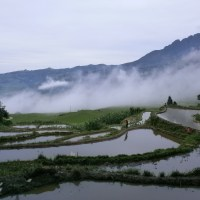 Las espectaculares terrazas de arroz de Yuanyang