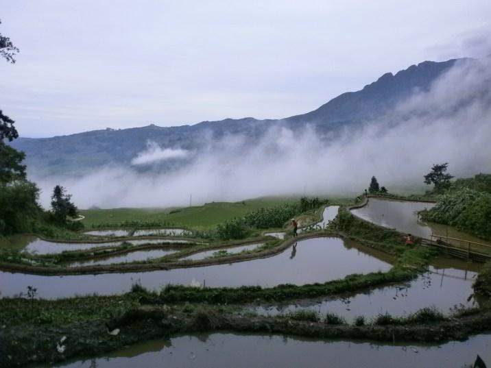 P6107115 - Las espectaculares terrazas de arroz de Yuanyang