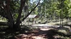 Meditación Vipassana - Rodeados de naturaleza en Wat Suan Mokkh
