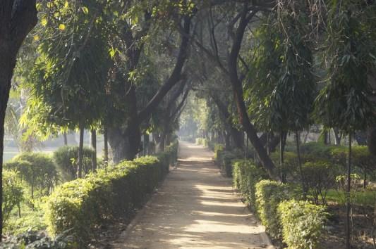 Parque Nueva Delhi 500x333 - Los Mejores Lugares que ver en Nueva Delhi