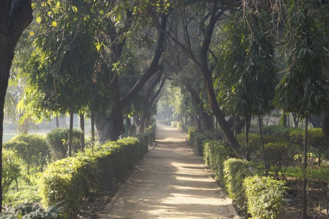 Parque Nueva Delhi 500x333 - Top 5 places to see in New Delhi
