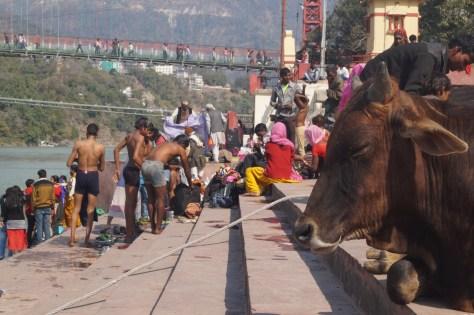 Rishikesh - Gaths Río Ganges