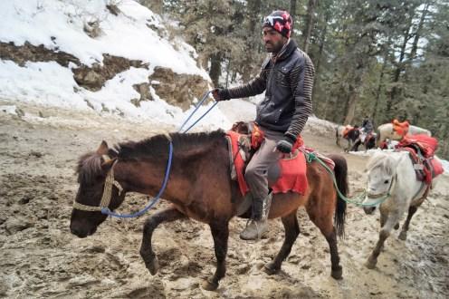 Shimla A caballo 03 - Shimla, lugares de interés: ciudad colonial al lado del Himalaya