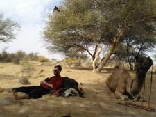 Jaisalmer - Safari desierto Thar 04