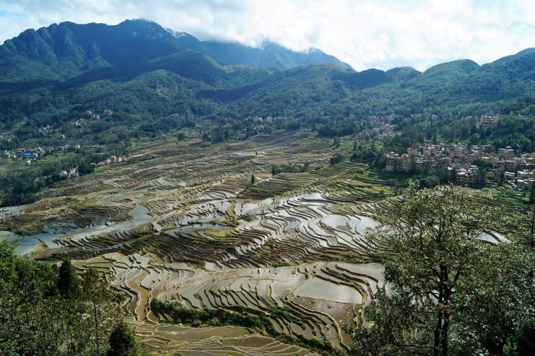 Viaje organizado a Yunnan - Arrozales de Yuanyang