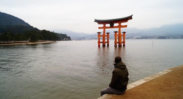 Contemplando el santuario de Miyajima 1024x552 - Lo mejor de la isla de Miyajima, un día de visita al gran Torii
