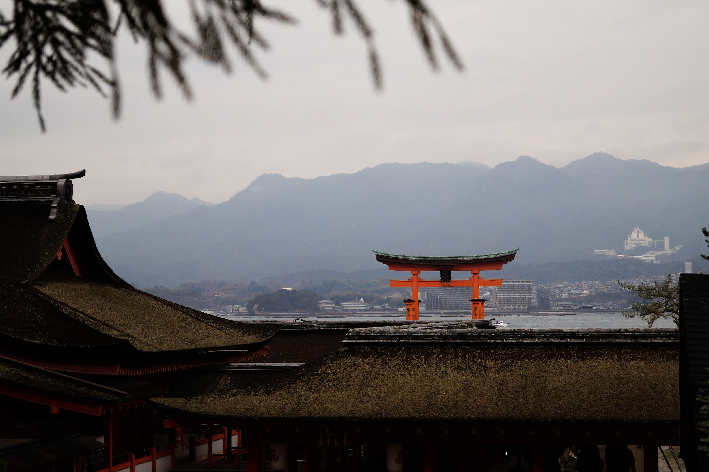La isla de Miyajima - Miyajima Island, a day visiting the great Torii