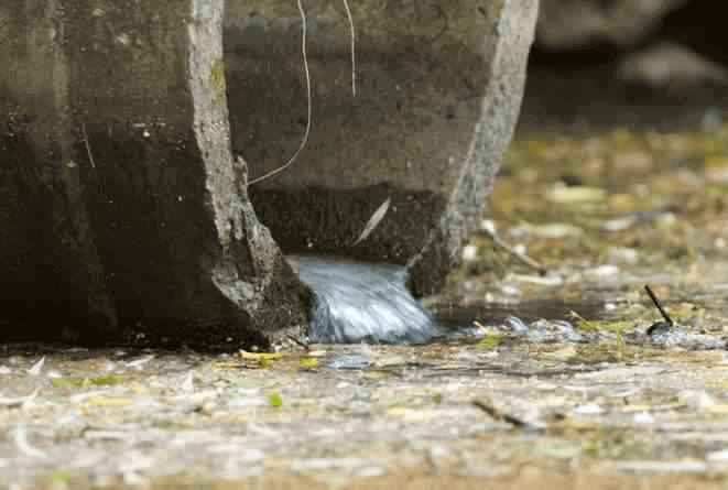 بحث عن تلوث الماء موضوع