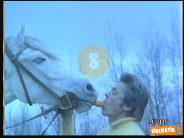 film karelerinde yesilcam.sinematikyesilcam.com043