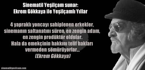 Ekrem Gokkaya banner 001