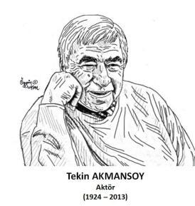 Tekin Akmansoy_n