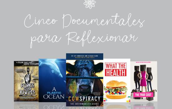Cinco Documentales para Reflexionar