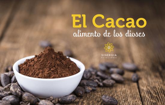 El Cacao: Alimento de los dioses