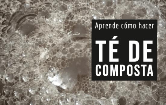 Aprende cómo hacer Té de Composta para tu huerto – IGTV