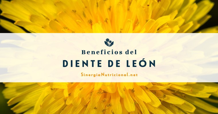 Beneficios del Diente de León
