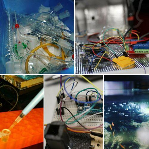 Biohacking, Democratising Biology
