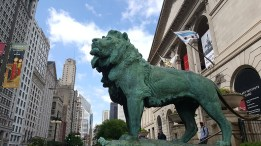 Magnificent lion statue outside the Art Institute of Chicago.