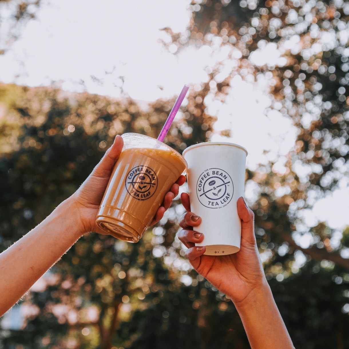 coffee bean & tea leaf 1-for-1
