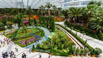 Image result for Singapore Botanic Gardens