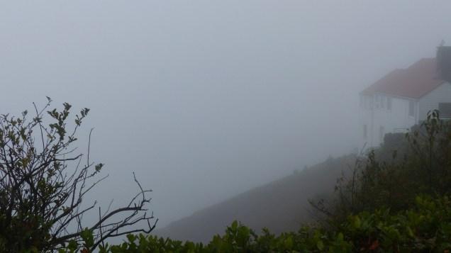 oregon-coast_viewpoints_21