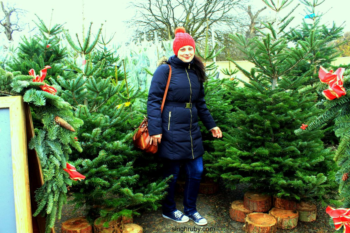 Let's Go Christmas Tree Shopping !
