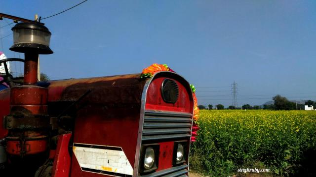 Tractor and Mustard fields, the constant companions of the road trip