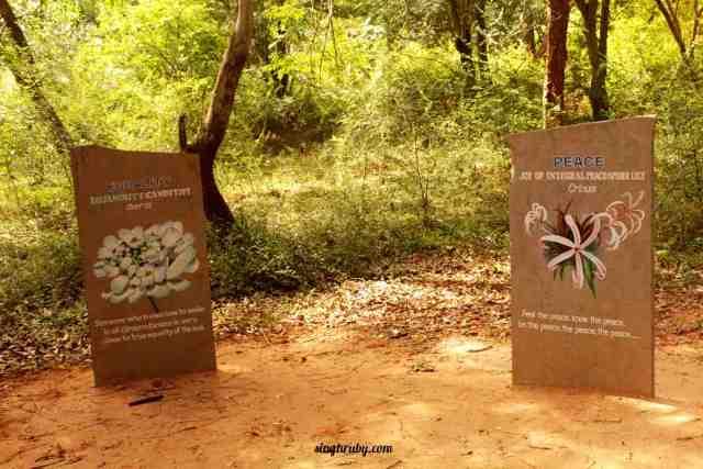 Inside Auroville in Pondicherry