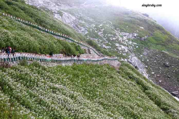trekking-trail-of-hemkund-sahib