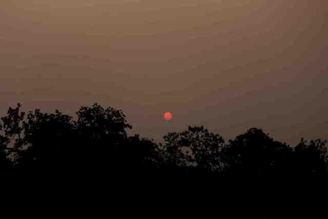 sunset-at-panna-national-park
