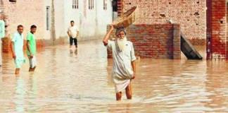 punjab-rain-havoc