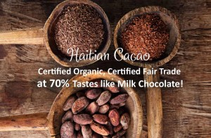 buy fermented Haitian cacao online