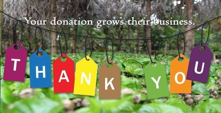 Haitian coffee seedling fundraiser