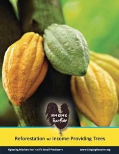 Peanut Moringa Haitian chocolate anyone?