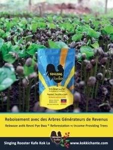 reforest-haiti-coffee